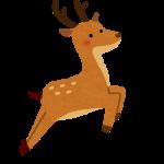 鹿が出た 東区 札幌住宅街